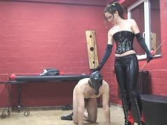 Submissive slave is disguised as a horse